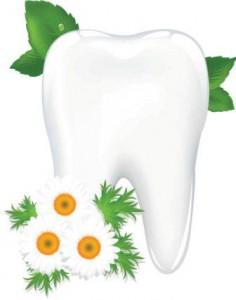 Натуральные средства для чистки зубов