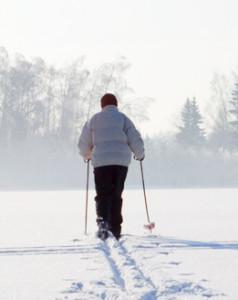 Катание на беговых лыжах – отличная зимняя зарядка для организма.