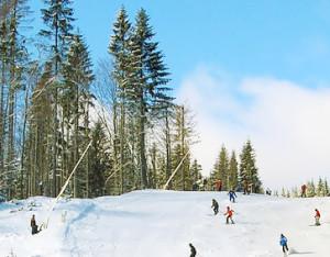 Польза катания на горных лыжах.