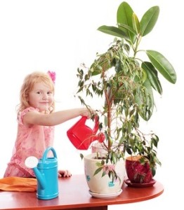 Какие растения обязательно должны быть в детской комнате.